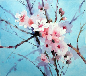 Blossom watercolour