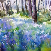 bluebells, original art by Trevor Waugh