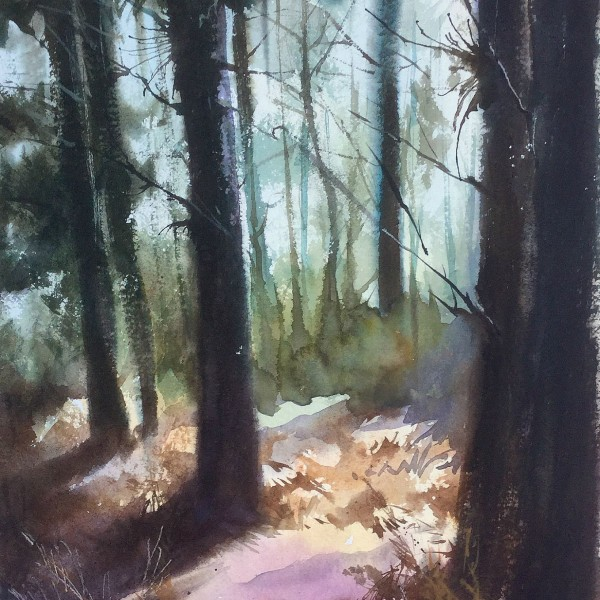woodland light, original art by Trevor Waugh